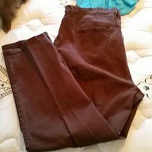 Gloria Vanderbilt Jeans - Brown Straight Leg Denim Jeans